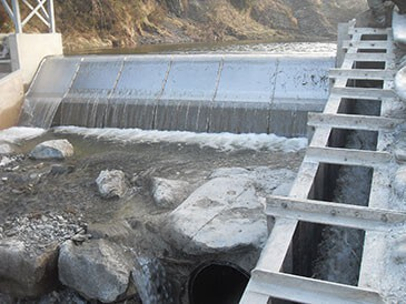 Integrated Coanda screen and temporary fish pass